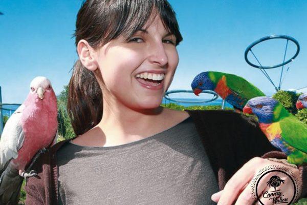 katandra-loro-parque-tenerife
